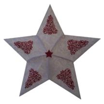 Stern weiß Rot